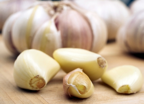 garlic-clove