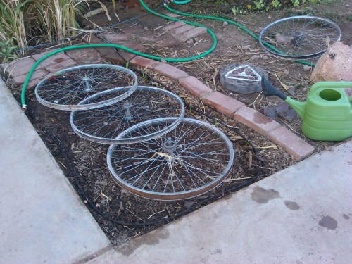 Protecting the Garden From Dogs With Bike Wheels :)