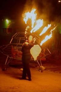 Crimson Phoenix on Fire Fans